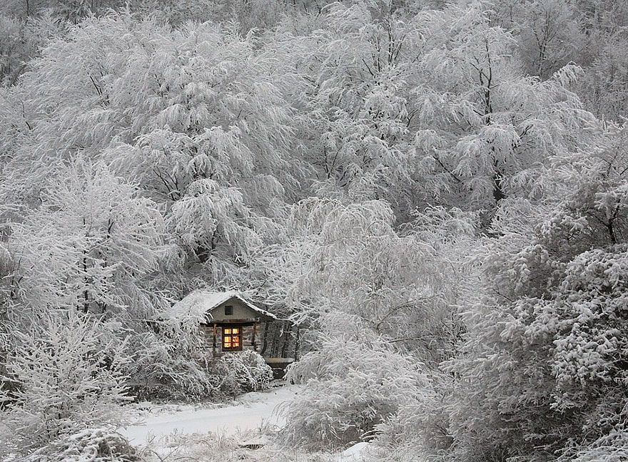 A Hut In Winter